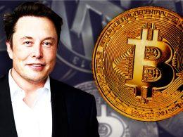 Elon Musk planeja criar cidade com economia em criptomoeda