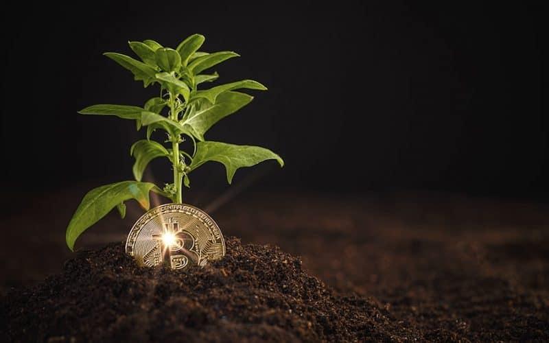 A mineração de Bitcoin pode ser sustentável?