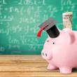 Tesouro IPCA ou Tesouro Selic, qual a melhor opção para o cenário atual?
