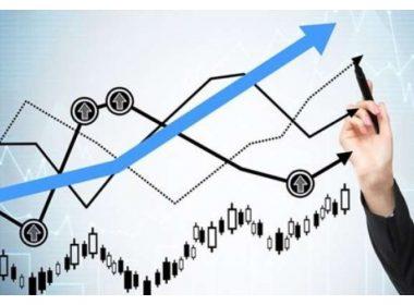 Gestor de investimentos: Entenda a sua importância e como ele atua